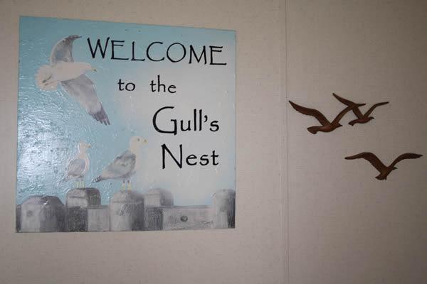 Gulls-Nest8