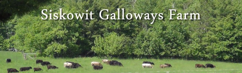 siskowit_galloways_slide_2-Copy